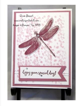 dragonfly team meet card