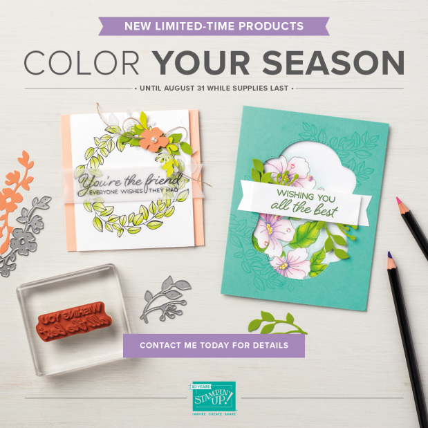 Color Your Season Limited Time Bundle