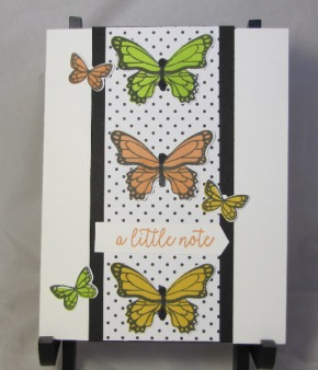 butterfly gala 2