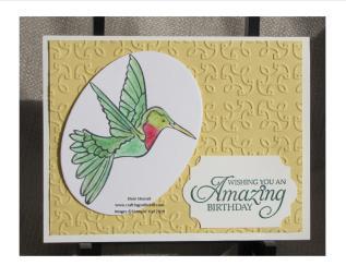 hummingbird w garden trellis w logo
